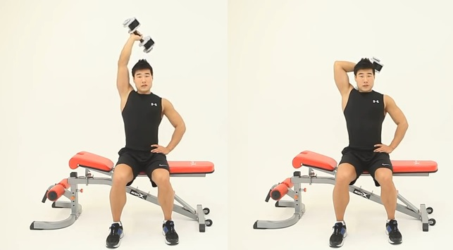 One Arm Dumbbell Triceps Extension one-arm-seated-dumbbel...