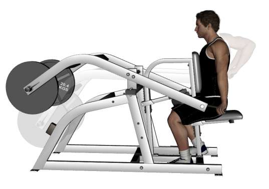 seated tricep machine