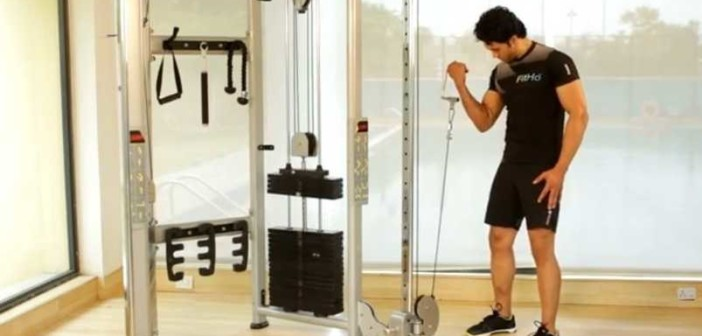 Single Arm Cable Biceps Curl