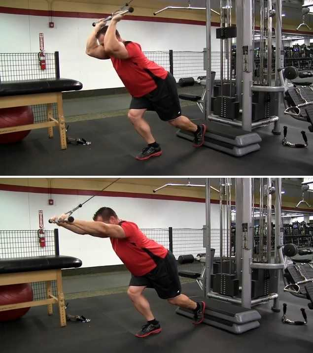 Cable Rope Overhead Triceps Extension • Bodybuilding Wizard