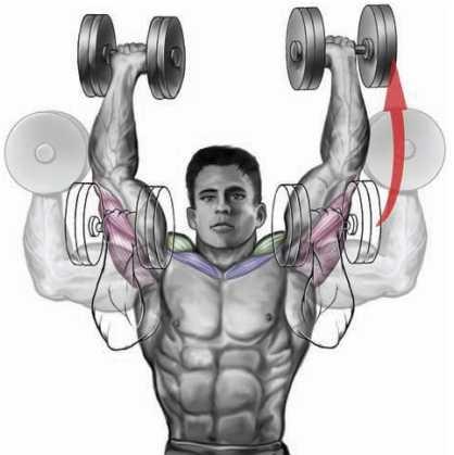 Variable-Grip Dumbbell Shoulder Press