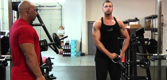 Cable Side Deltoid Raise