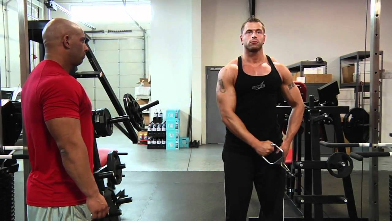 onearm cable lateral raise � bodybuilding wizard