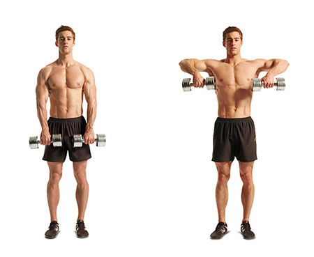 Dumbbell Upright Row Exercise