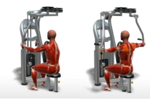 آلة عكس ذبابة التمرين