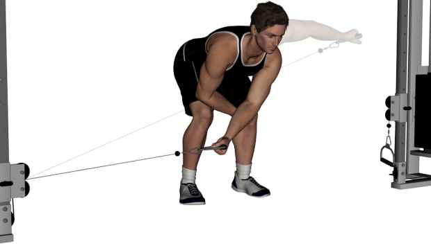 Rear Delt Cable Raise One-Arm Bent-Ov...
