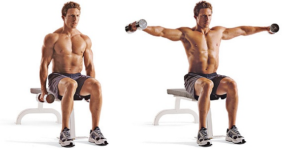 Image result for seated dumbbell lateral raises