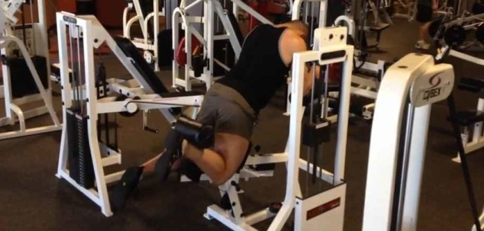 Standing Leg Curl Exercise Guide