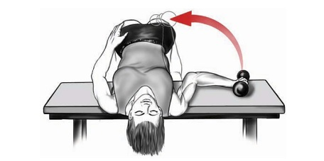 Dumbbell Internal Rotation