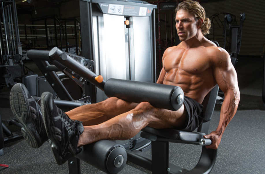 Seated Leg Curl Exercise Bodybuilding Wizard