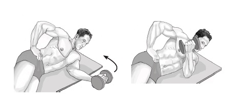Side Lying Dumbbell Internal Rotation