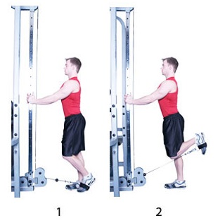 Cable Leg Curl Exercise Guide • Bodybuilding Wizard