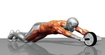 Ab Wheel Rollout Exercise Guide