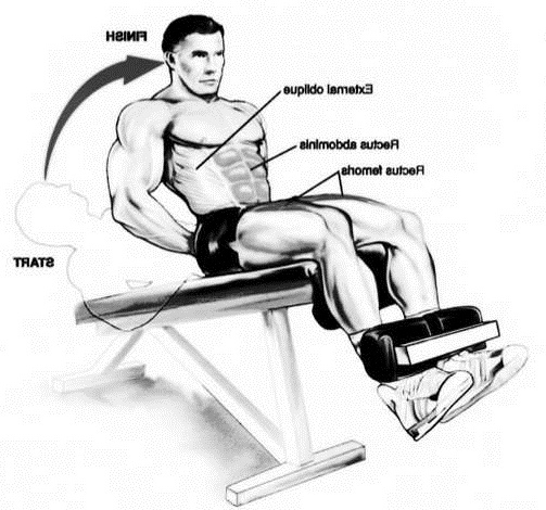 Decline Bench Sit Ups Bodybuilding Wizard