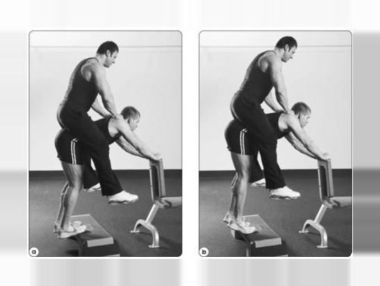 Donkey Calf Raise Exercise Guide