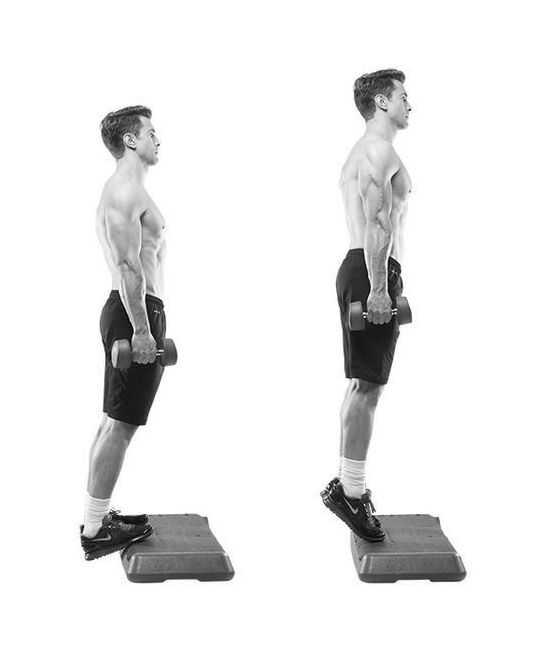Standing Dumbbell Calf Raise • Bodybuilding Wizard