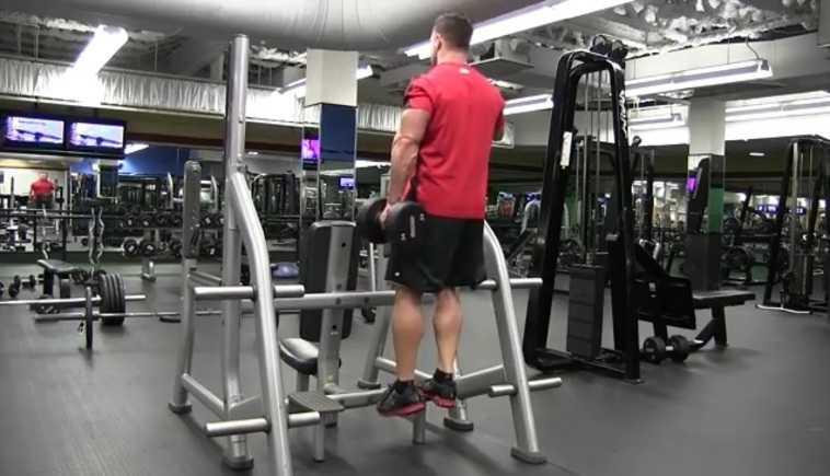 Standing Dumbbell Calf Raise Bodybuilding Wizard