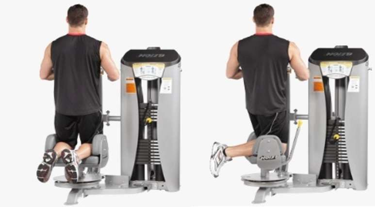 torso rotation machine bodybuilding