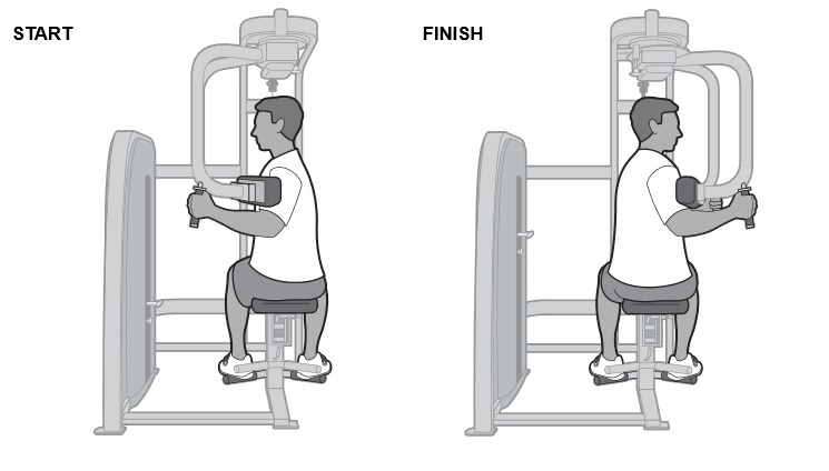 Seated Trunk Rotations - Oblique Muscles