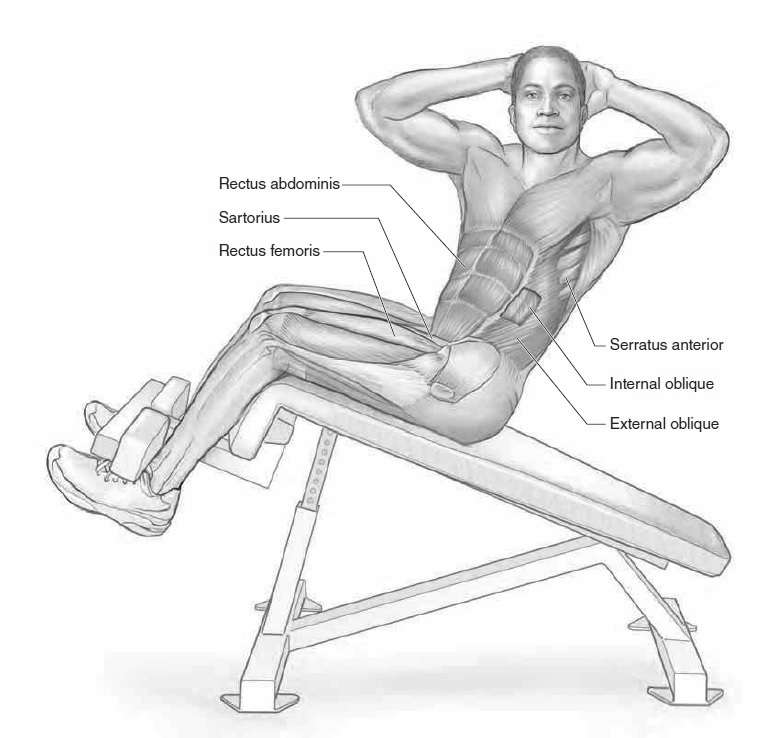 Twisting Sit-Up • Bodybuilding Wizard