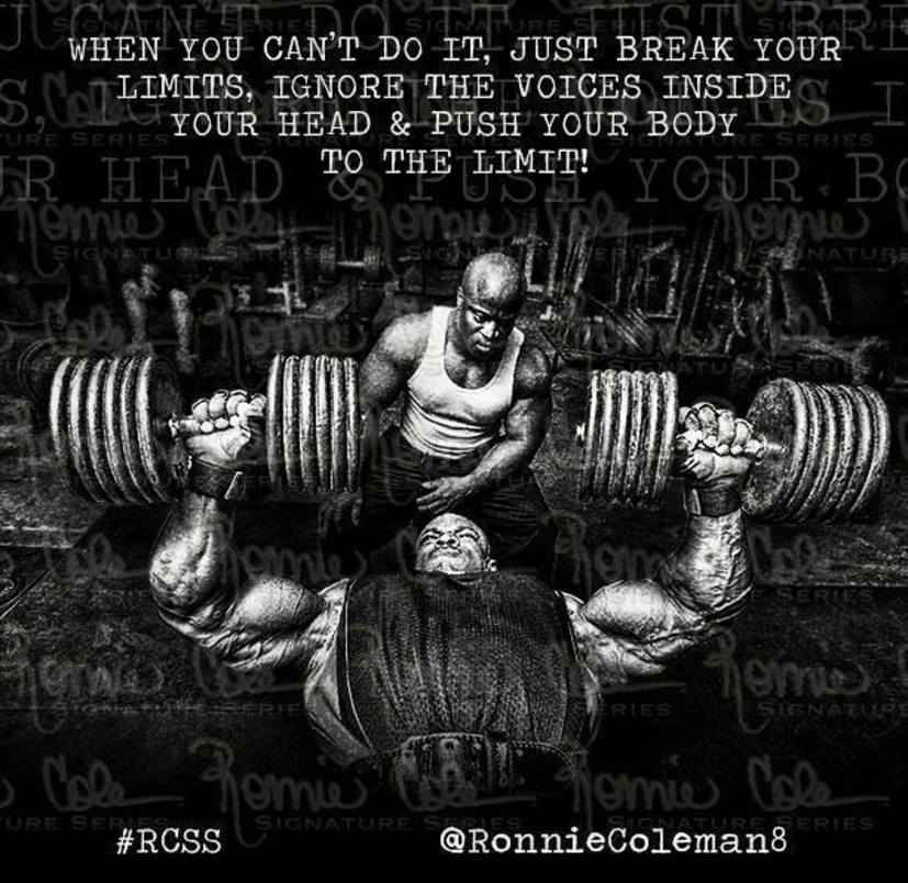 Popular Bodybuilding Quotes And Sayings Bodybuilding Wizard Custom Bodybuilding Quotes