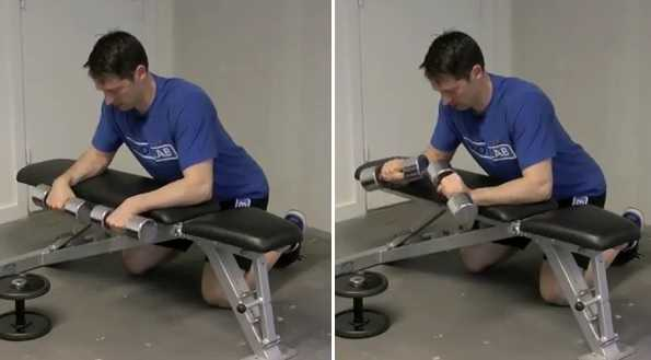 Dumbbell Reverse Wrist Curls Over a Bench