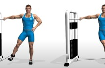 Low pulley cable hip adduction