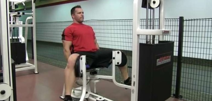 Machine Hip Adductions