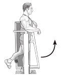 Standing Hip Flexion