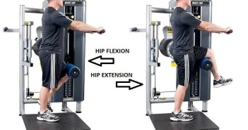 Gym Equipment: Hip Flexor & Hip Extensor