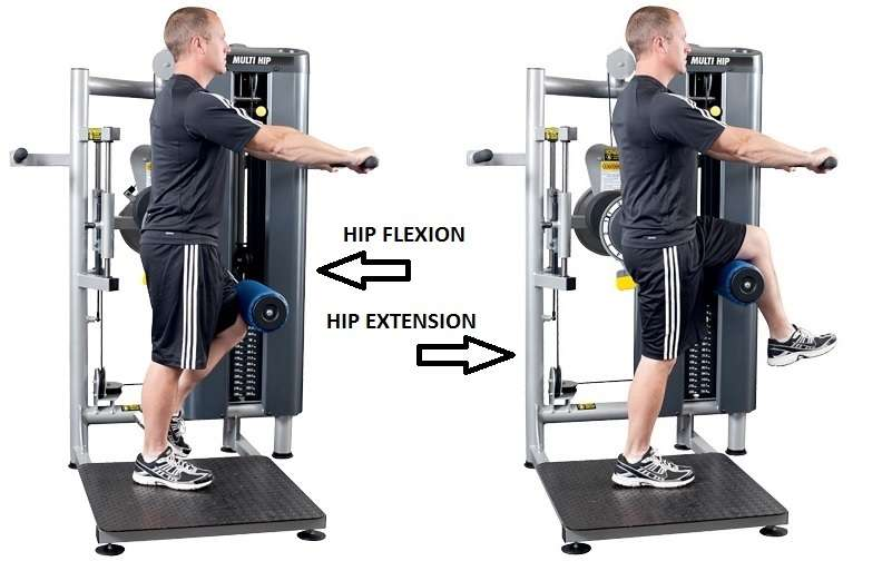 the way to use hip flexor machine