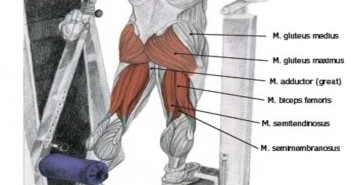 Standing Machine Hip Extension