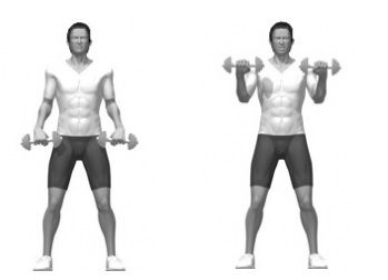 Reverse Curls With Dumbbells