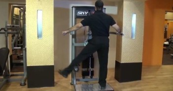 Standing Adductor Machine