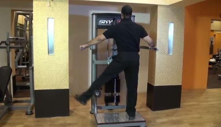 Standing Machine Hip Adduction • Bodybuilding Wizard