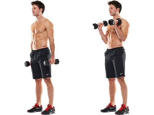 Standing Hammer Curl - Two Arms At A Time