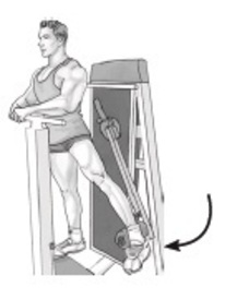 Standing Machine Hip Adduction
