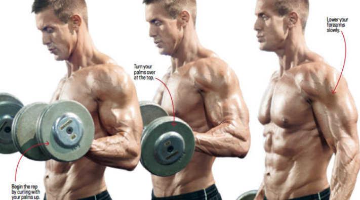 Standing Zottman Curl • Bodybuilding Wizard