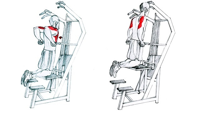 Assisted Chest Dips