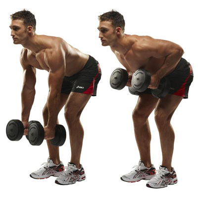 Two-arm Dumbbell Rows - Bent over rows