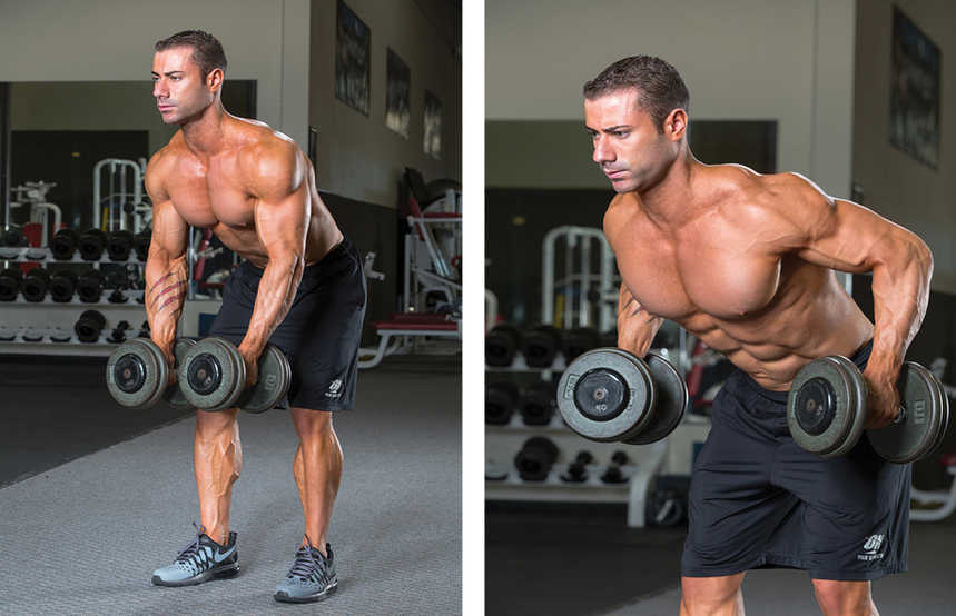 Two Arm Dumbbell Row Bodybuilding Wizard