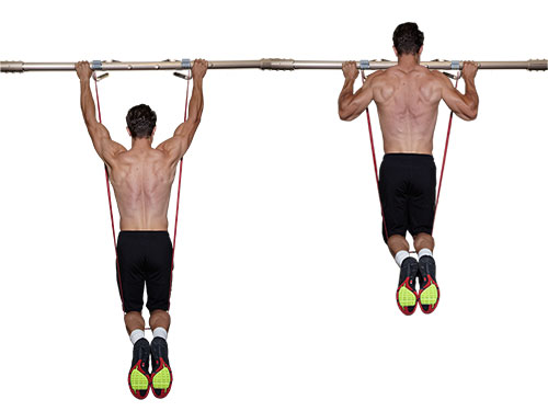 Assisted Pull-Up • Bodybuilding Wizard