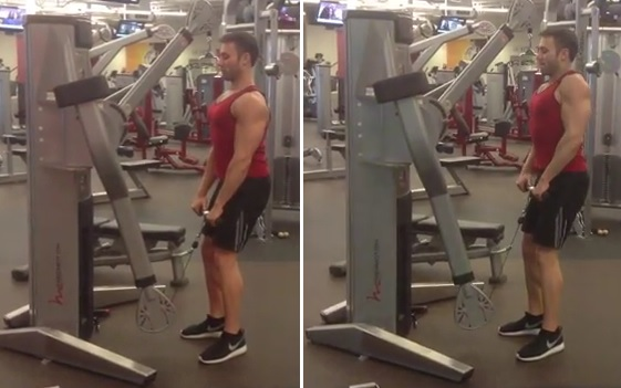 cable shrug exercise for trapezius