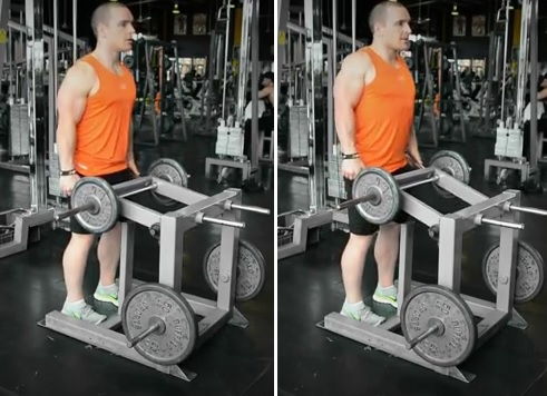 Machine Shrug - Trapezius Exercise