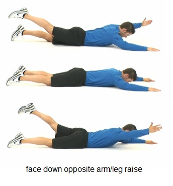 Lying back extension bodybuilding wizard for Opposite of floor