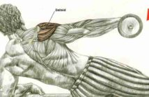 Incline Side Lateral Raises