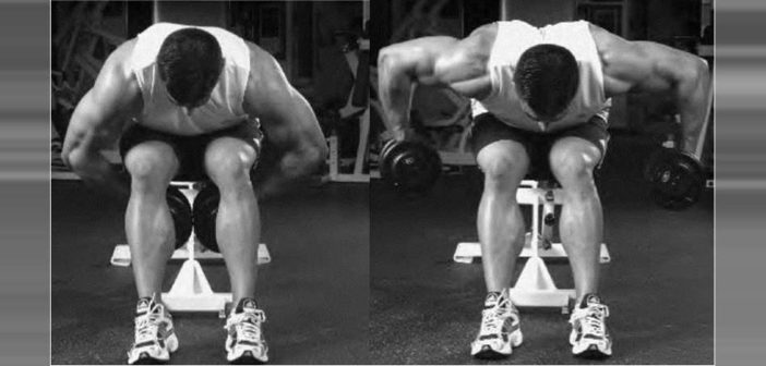 Seated Bent-Arm Bent-Over Dumbbell Row