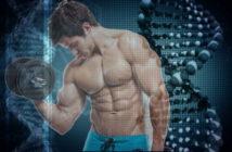 Genetic Factors for Successful Bodybuilding