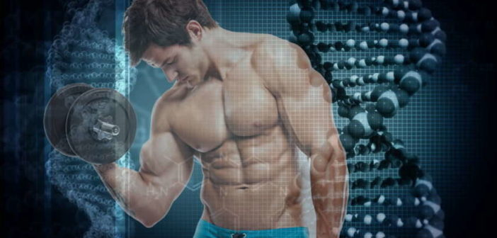 Genetic Factors for Successful Bodybuilding