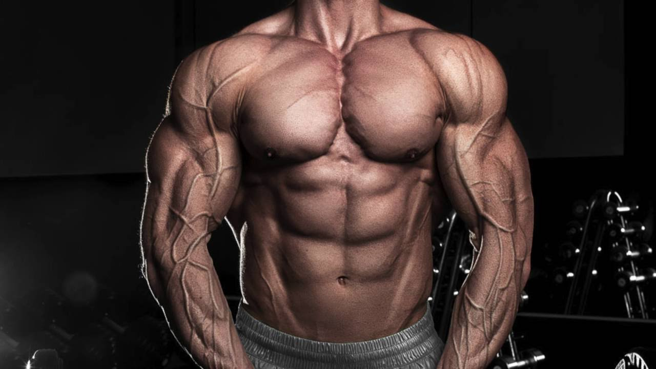 The Truth About Bodybuilding Genetics